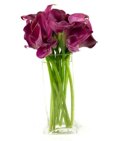 Lovely Lady Calla Lilies Flower Arrangement