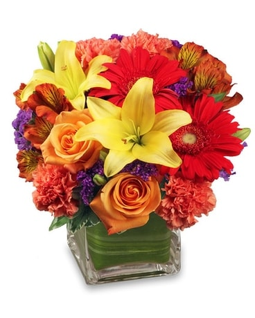 Bright Before Your Eyes Bouquet Flower Arrangement