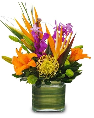 Seattle's Tropical Romance Flower Arrangement