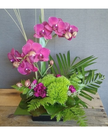 TCL's Zen Artistry Flower Arrangement