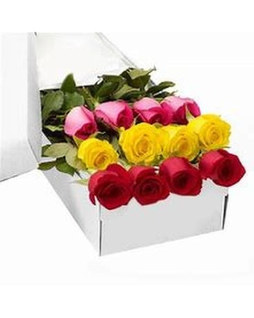 Traditional Boxed Roses Flowers