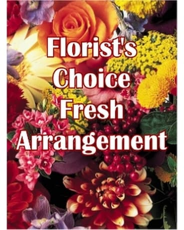 Florist's Choice - Fresh Arrangement Flower Arrangement
