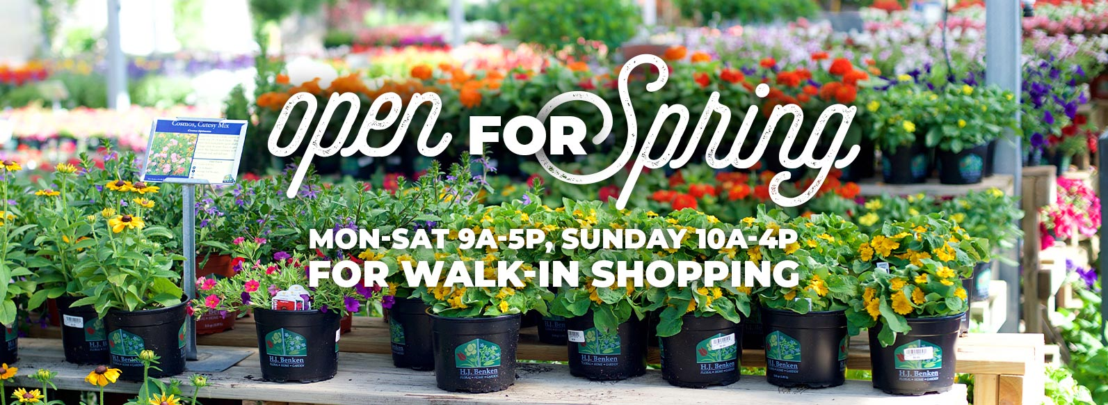 Open for Spring for Walk-In Shopping: Monday through Saturday 9am to 5pm, Sunday 10am to 4pm.