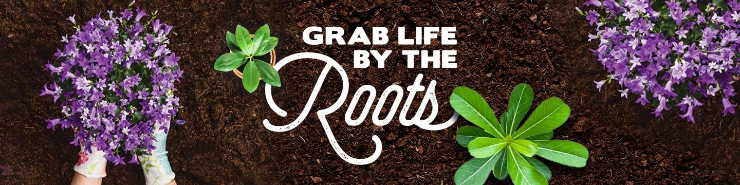 Grab life by the roots.