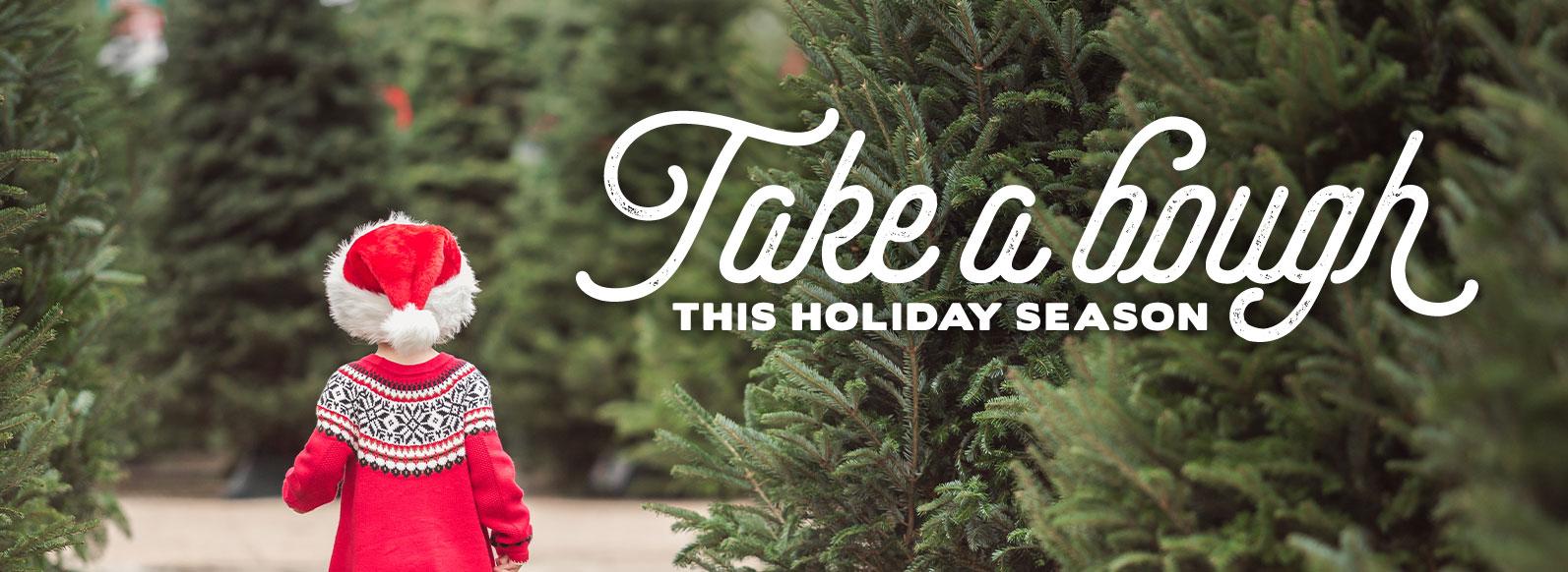 Take a bough this holiday season.
