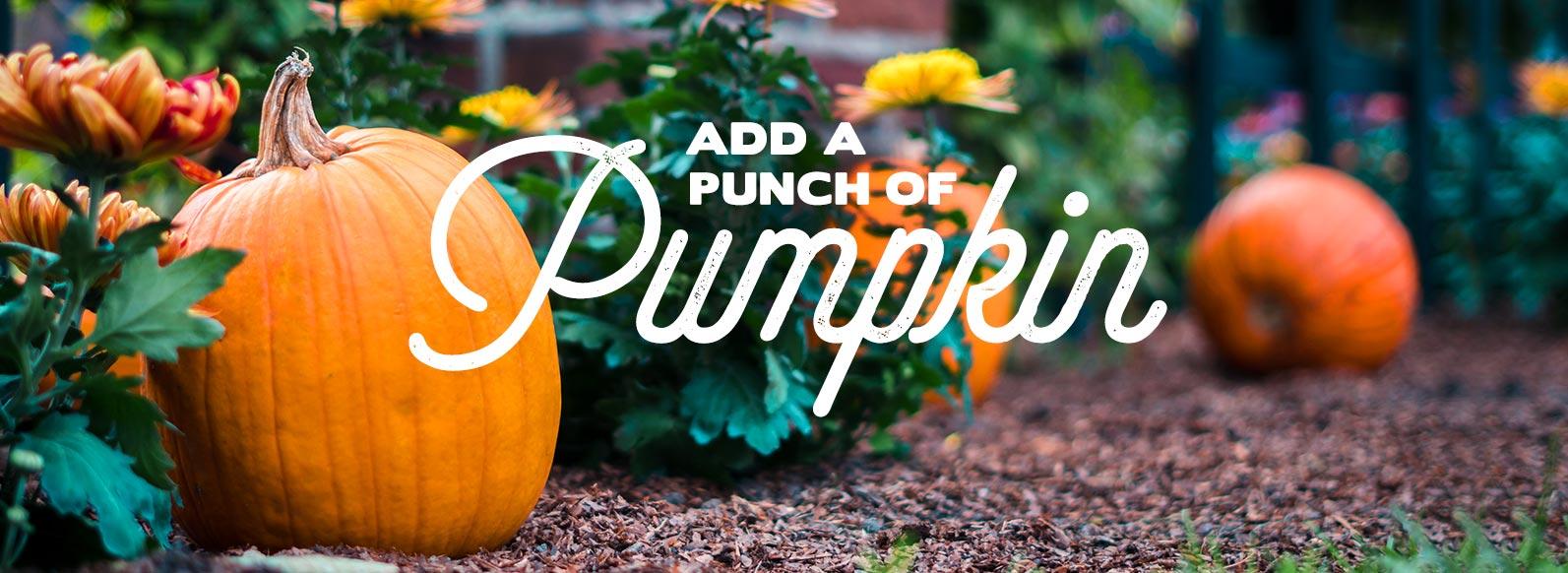 Add a punch of pumpkin.