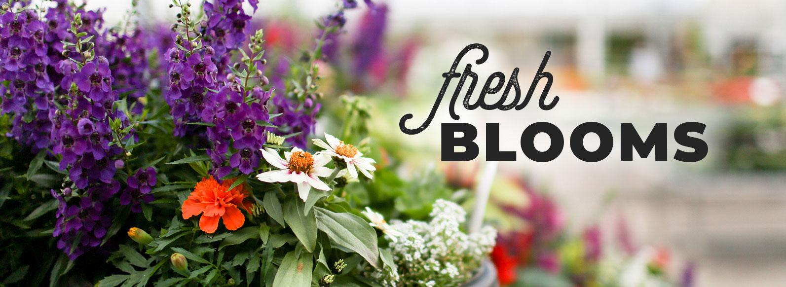 Fresh blooms.