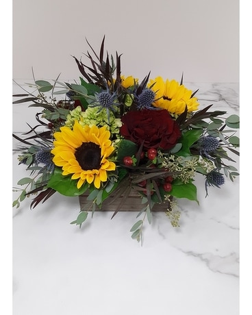 Sunflower Oasis Centerpiece Square & Compact