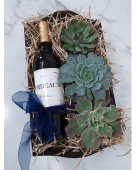 Succulents & Wine Gift Basket