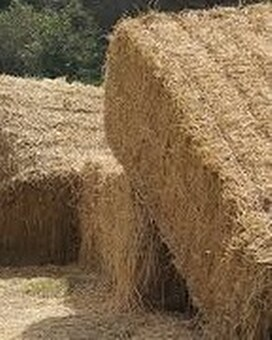 Bale of Straw Custom product