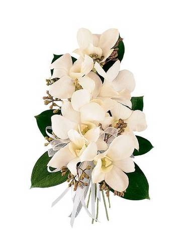 White Dendrobium Corsage Flower Arrangement