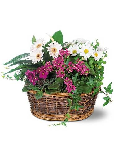 Traditional European Garden Basket Basket Arrangement