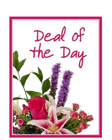 Deal of the Day - Valentine's Day Flower Arrangement
