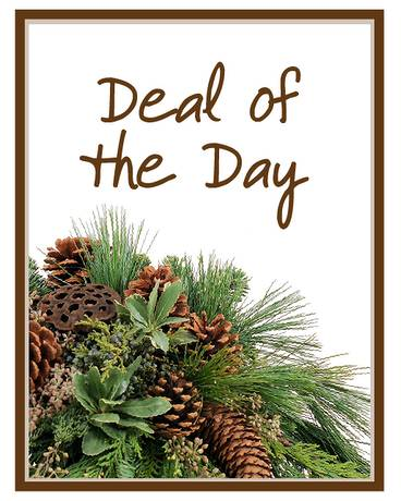 Deal of the Day - Winter Flower Arrangement