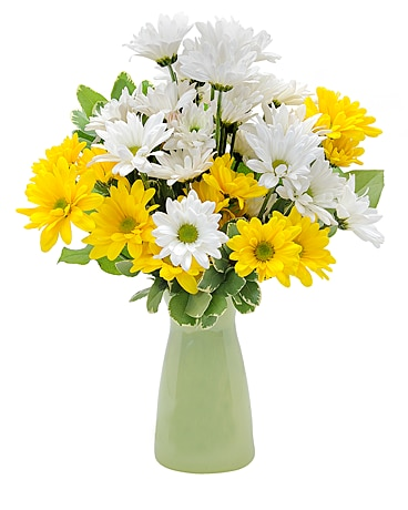 Daisy Craisy Flower Arrangement