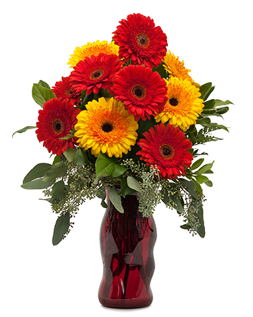 Mighty Gerberas Flower Arrangement