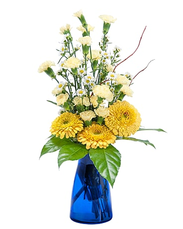Get well flowers delivery bonita springs fl heaven scent flowers inc natures smile mightylinksfo