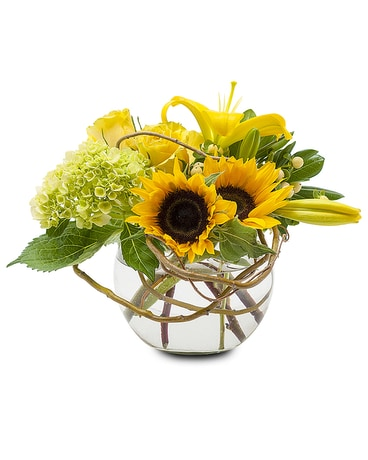 Rays of Sun Flower Arrangement
