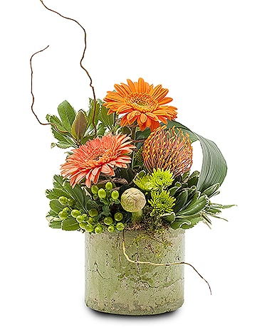 Urban Renewal Flower Arrangement