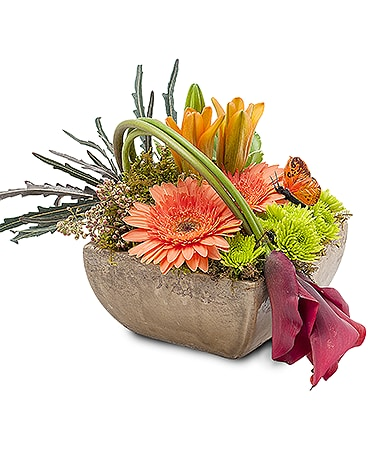 Urban Wings Flower Arrangement