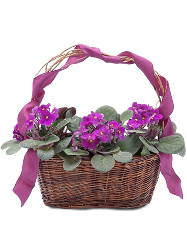 Very Violet Basket Flower Arrangement
