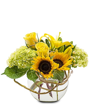 Philadelphia florist flower delivery by sallys flowers sunshine rays flower arrangement mightylinksfo