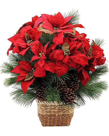 Natural Poinsettia Flower Arrangement