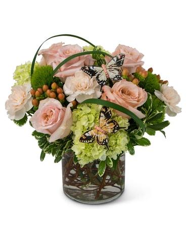 Song of gratitude in avon lake oh sissons flowers gifts song of gratitude flower arrangement mightylinksfo