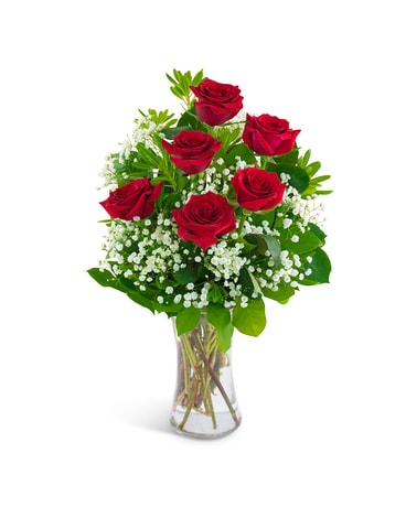 Six Red Roses and a Million Stars Flower Arrangement