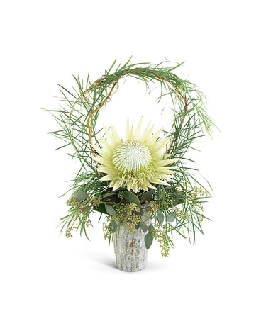 Wild Child Protea Flower Arrangement