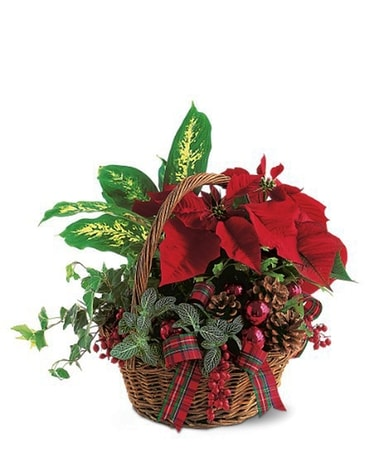 Holiday Planter Basket Flower Arrangement