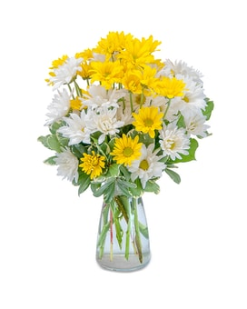 Dazed Daisies Flower Arrangement