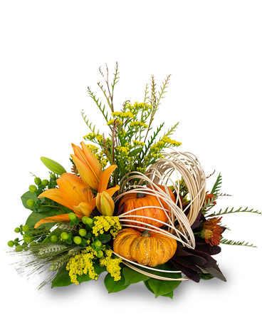 Abstract Cornucopia Flower Arrangement