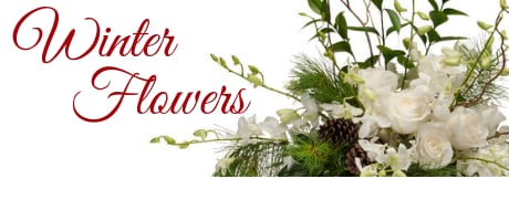 Broomfield Florist Flower Delivery By Bouquet Boutique Inc