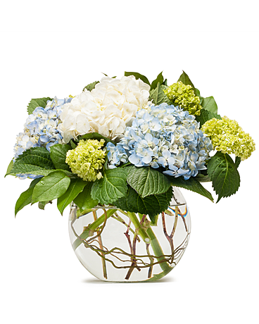 Mighty Hydrangea - Flower Arrangement