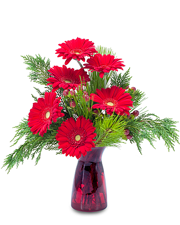 Winter Gerbera Flower Arrangement