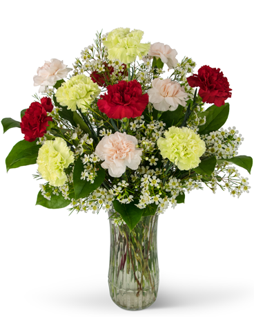 A Dozen Colorful Carnations Flower Arrangement