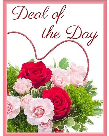 Deal of the Day - Valentine's Day
