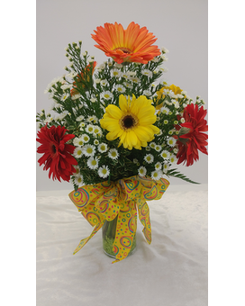Woodland's Own 6 Gerbera Daisy