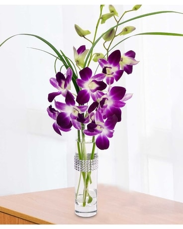Best Value Orchids Flower Arrangement