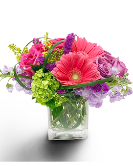 Get Well Flowers Delivery Milwaukee Wi Alfa Flower Shop