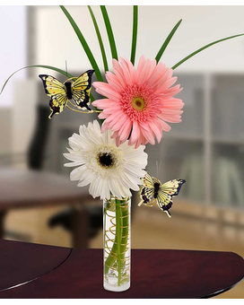 Gerbera Daisy Delight Flower Arrangement