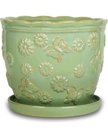 Meadow Planter Green or White Gifts