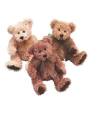 Scruffy Bear 5 Gifts
