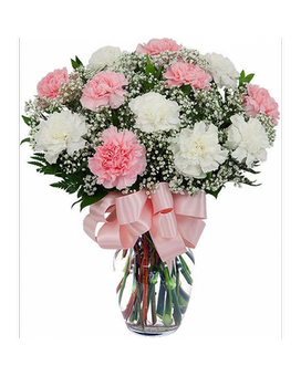 Dozen Pink & White Carnations Flower Arrangement