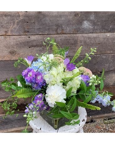 Larkspur Flower Flower Arrangement