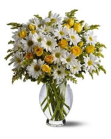 Teleflora's Daisy Days Deluxe - by Top Florist Custom product