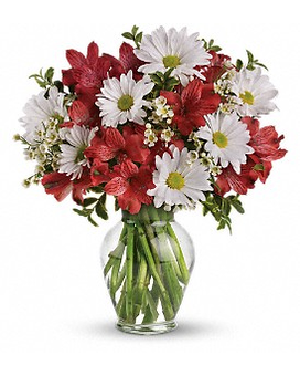 Dancing in Daisies Flower Arrangement