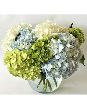 Spring flowers delivery east quogue ny roses and rice quick view hamptons hydrangea mightylinksfo