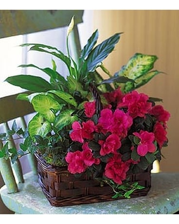 Azalea Attraction Garden Basket - by Lary's Floris Flower Arrangement